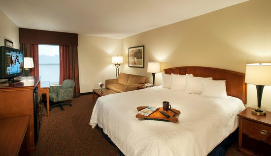Hampton Inn Potomac Mills/Woodbridge : King Room