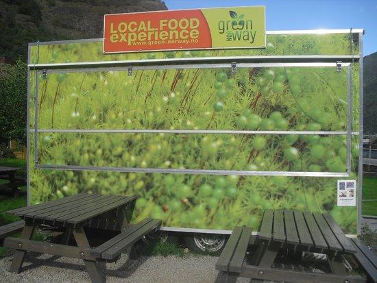 Green Norway Flam: Van where food is served