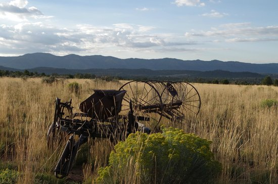 Flagstone Meadows Ranch Bed and Breakfast: Feels like a true rustic western vacation!