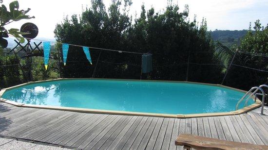 Agriturismo Poggio ai Cieli : piscina