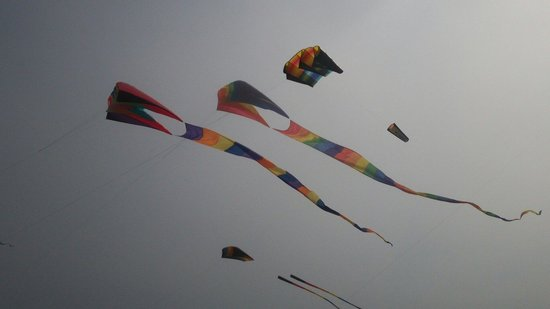 Long Beach : Kite festival