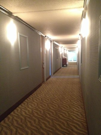 Super 8 Daleville/Roanoke: Corridor