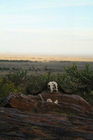 Maji Moto Eco Camp : The view - breathtaking