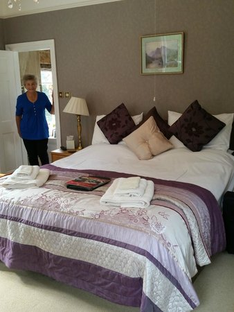 Afon Rhaiadr Bed and Breakfast: The Foxglove Room