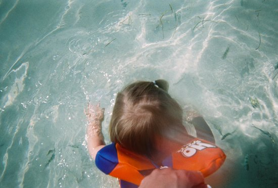 Jessie James Cruises: The fish swam right up to the kids and they loved ever second of it!