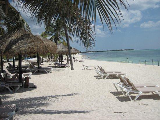 PavoReal Beach Resort Tulum: La spiaggia