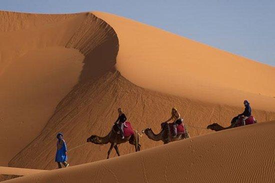 Desert Morocco Travel - Day Tours