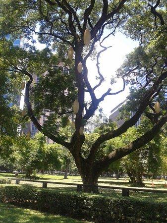 Ayala Triangle Gardens: Ayala triangle garden