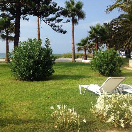 Nissi Beach Resort: View from beach bungalow 33