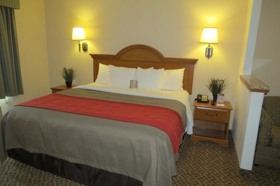 Guest Room Executive King Bed Picture of fort Inn