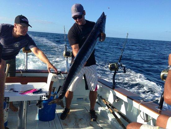 Sample ono picture of deep sea fishing kauai kapaa for Fishing in kauai