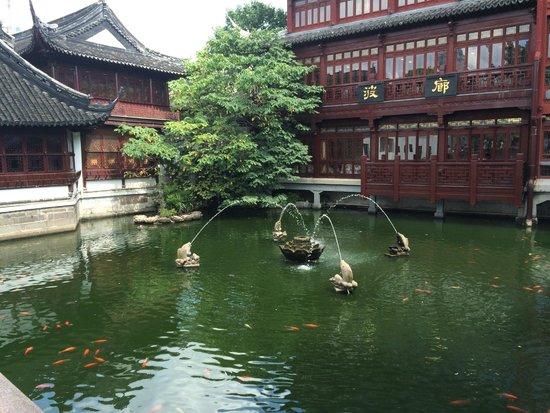 Sunny Tours Shanghai: Water way next to tea house