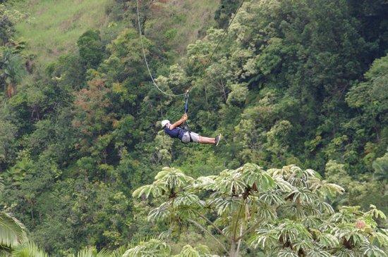 Skyline Eco Adventures - Akaka Falls: Tour guide on last zip line