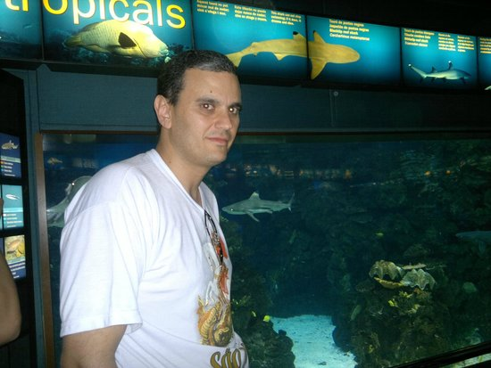 L'Aquarium de Barcelona: Aquarium Barcelona.