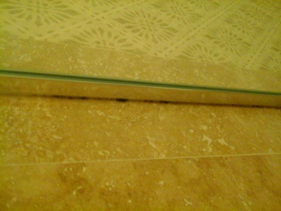 Marina Inn at Grande Dunes : mold in shower