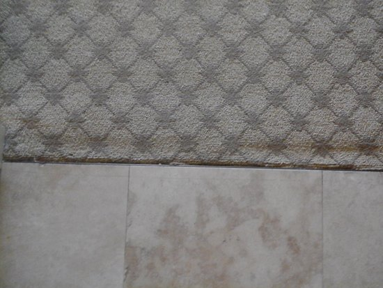 Marina Inn at Grande Dunes : worn carpet in entryway
