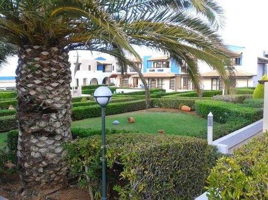 Aldemar Knossos Royal : ירוק ופסטורלי