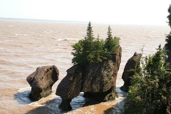 Hopewell Rocks: Receding water at Hopewell Rock formation
