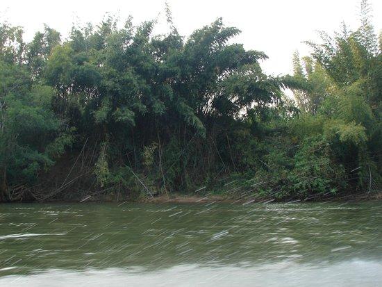 River Kwai Jungle Rafts Resort: River Kwai Jungle Rafts
