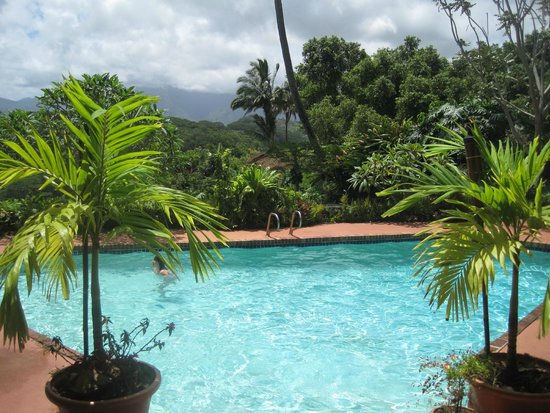 Secret Falls Retreat : Pool view