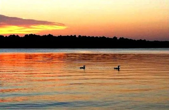 Samara Point Resort on Gull Lake: Sunset and loons - view from our dock.