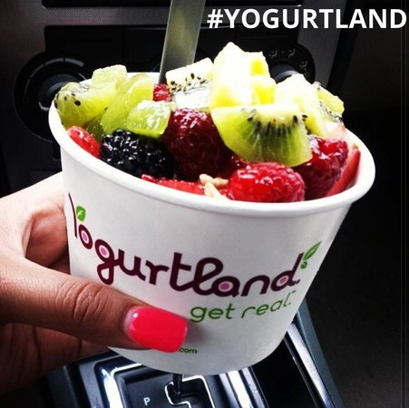 Yogurtland Garden Grove - Picture of Yogurtland Garden Grove ...