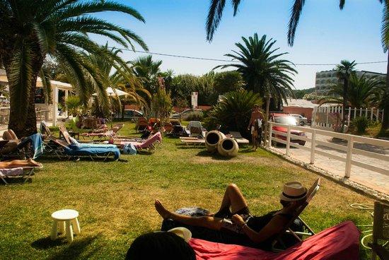 Malibu Summer: MAlibù