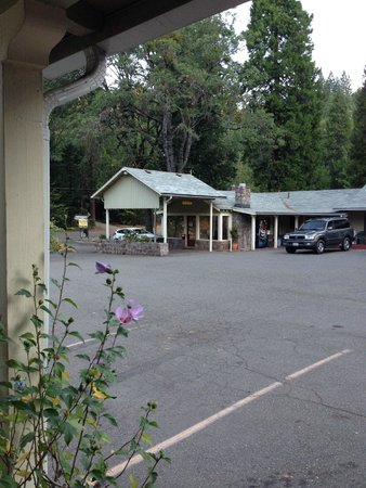 Dunsmuir Lodge: parking lot in the morning