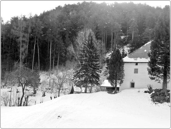 Martinerhof Hotel : ...