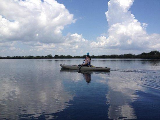 Cheeca Lodge & Spa: Kayaking near Cheeca