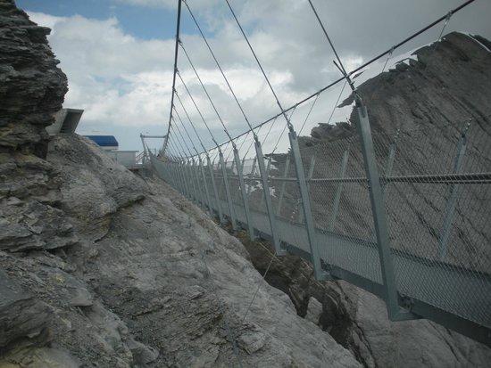 Mount Titlis : El puente colgante en el Titlis