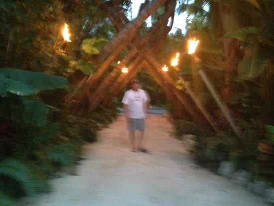 Cheeca Lodge & Spa: Great spot on the Cheeca's grounds