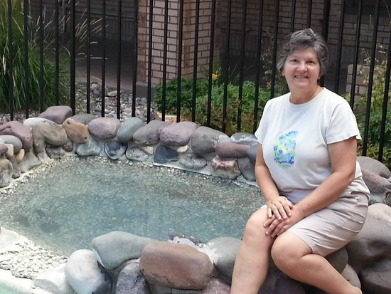 Best Western Plus Plaza Hotel: mineral hot springs directly next to hotel pool