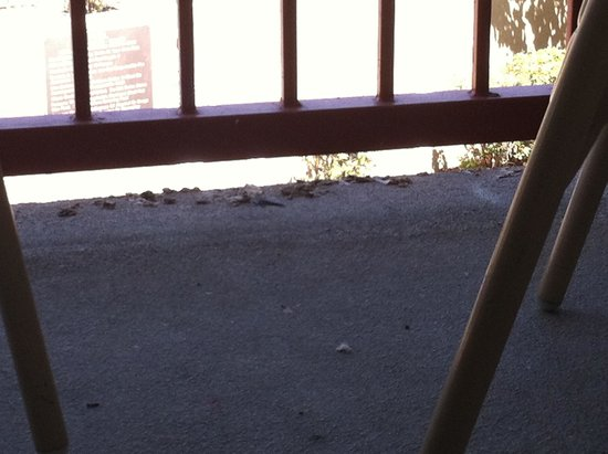 Hawthorn Suites by Wyndham Livermore Wine Country: bird droppings and dirty deck