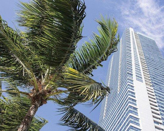 Four Seasons Hotel Miami   Photo