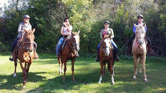 Wild 3L Ranch