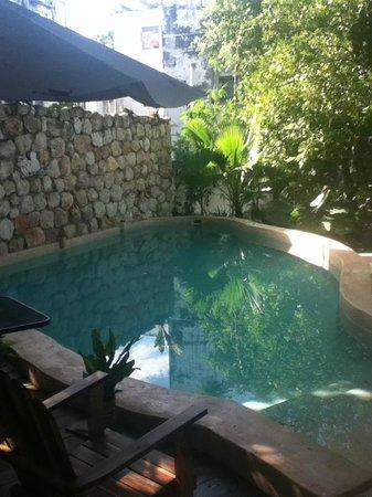 Casa Tía Micha: Casa Marlene pool