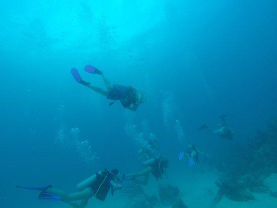 Cruz Bay Watersports: Grass Caye