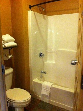 Wilderness at the Smokies Resort: Small bathroom