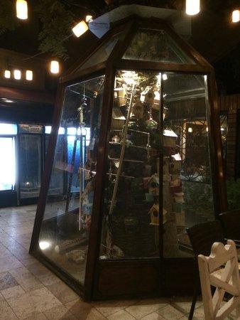 Tavaci Recep Usta: Bird cage in restaurant