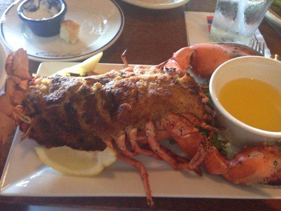 East Bay Grill: Stuffed lobster