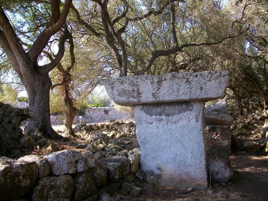 Torre Llafuda: History hidden by olive grove (2)