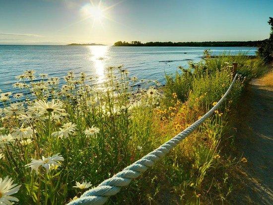 Sunrise Ridge Waterfront Resort: Beach Path