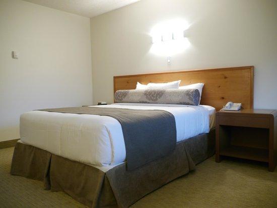 Rocky Mountain Ski Lodge: Guest Room