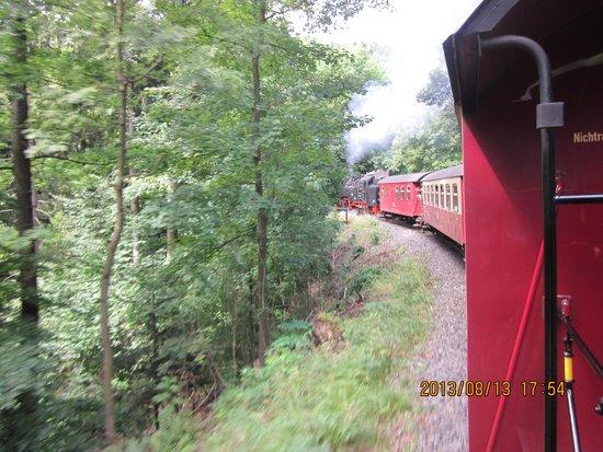 Zugfahrt zum Brocken: 生きてる蒸気機関車は煙のにおいがする