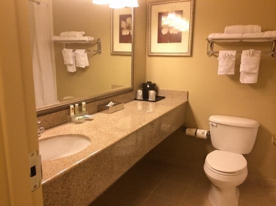 Country Inn & Suites By Carlson, Covington, LA: bathroom