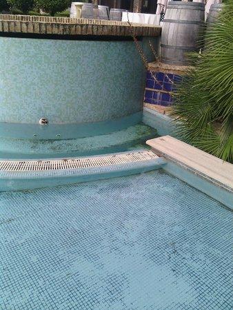 Agriverde: piscina ............unico neo