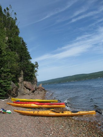 North River Kayak : At the halfway point of our half-day kayak