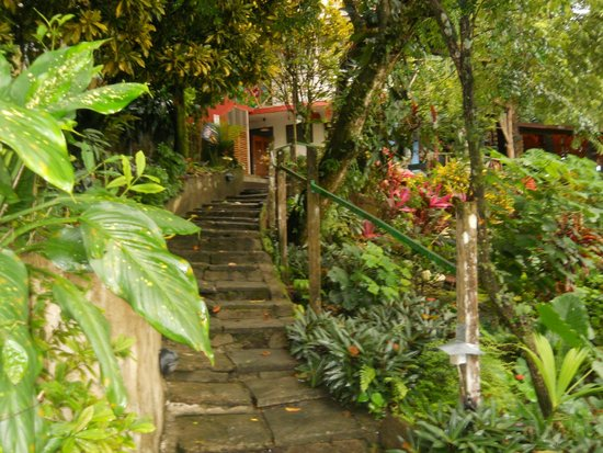 Hostel Plinio: Lush and beautiful grounds