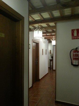 Hotel Blanco y Verde: pasillos